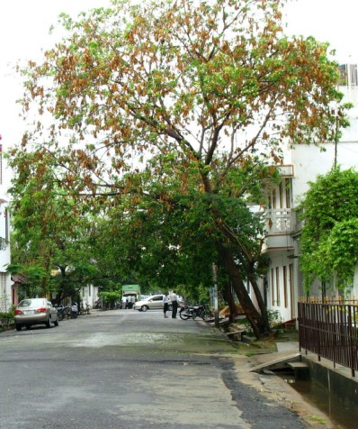 street3_4_1.jpg